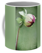 Dahlia Flower 2 Coffee Mug