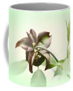 Dainty Coffee Mug