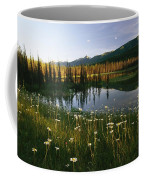 Daisies Grow Near A Lake In Yoho Coffee Mug