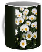 Daisy In A Field Coffee Mug