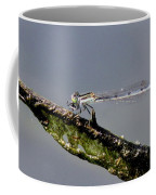 Damsel With Lunch Coffee Mug