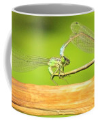 Damselflies Coffee Mug