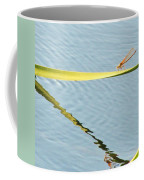 Damselfly Reflection Coffee Mug
