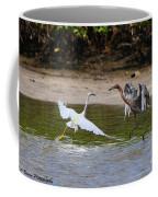 Dancing Egrets Coffee Mug