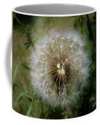 Dandelion Going To Seed Coffee Mug