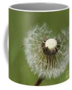 Dandelion Half Gone Coffee Mug