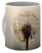 Dandelion In Backlight Coffee Mug