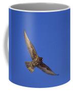 Dark Morph Gyrfalcon Coffee Mug