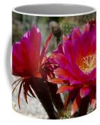 Dark Pink Cactus Flowers Coffee Mug