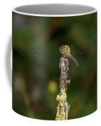 Darter 5 Coffee Mug