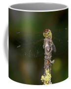 Darter 7 Coffee Mug