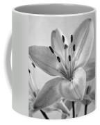 Day Lily Coffee Mug