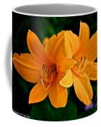 Daylily Duo Coffee Mug