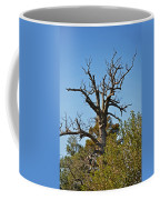 Dead Tree Coffee Mug