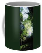 Deciduous Wood, Killarney National Coffee Mug