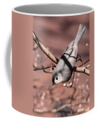 Decked Out - Tufted Titmouse Coffee Mug