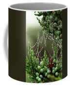 Decorated Bush Quogue Wildlife Preserve Coffee Mug