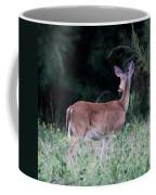 Deer - Doe - I Heard Something Coffee Mug