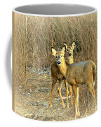 Deer Duo Coffee Mug