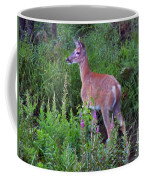 Deer In The Marsh Coffee Mug