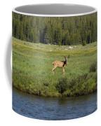 Deer In Tuolumne Meadow Coffee Mug