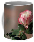Delany Sister Coffee Mug