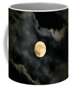 Delicate Balance Coffee Mug