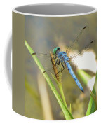 Delicate Dragonfly Coffee Mug