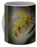 Delicate Edge Coffee Mug