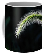 Delicate - Greeting Card Coffee Mug