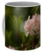 Delicately Peach Coffee Mug