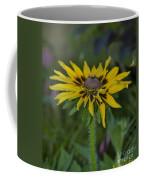 Denver Daisy 2 Coffee Mug