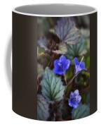 Desert Bluebells  Coffee Mug