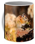 Desert Chipmunk Eating His Breakfast Coffee Mug