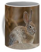 Desert Cottontail Rabbits Coffee Mug