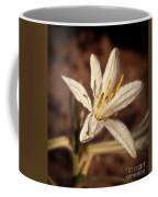 Desert Easter Lily Coffee Mug
