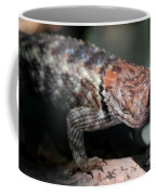 Desert Lizard Coffee Mug