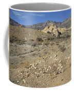 Desert Washout Coffee Mug