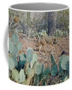Desert Wolf Coffee Mug
