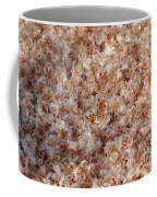 Desert's Collection Of Dried Flowers 2 Coffee Mug