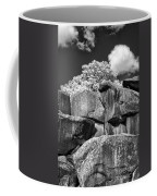 Devil's Den - 39 Coffee Mug