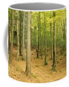 Devils Glen Woods, County Wicklow Coffee Mug