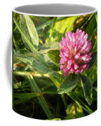Dew Covered Clover Blossom Coffee Mug