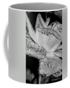 Dew Drop Rose Coffee Mug