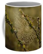 Dew Highlights An Orb-weaver Spiders Coffee Mug