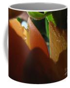 Dew Light And Shadows Coffee Mug