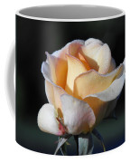Dew On Rose Coffee Mug