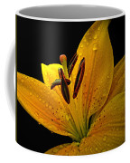 Dew On The Daylily Coffee Mug