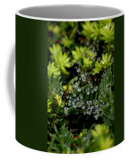 Dew Spheres Coffee Mug