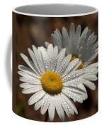 Dew Tell Oxeye Daisy Wildflowers Coffee Mug